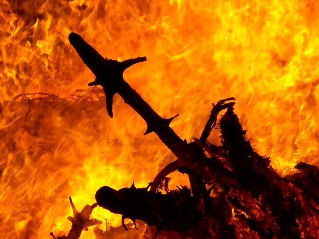 Brandgefahr am Weihnachtsbaum.