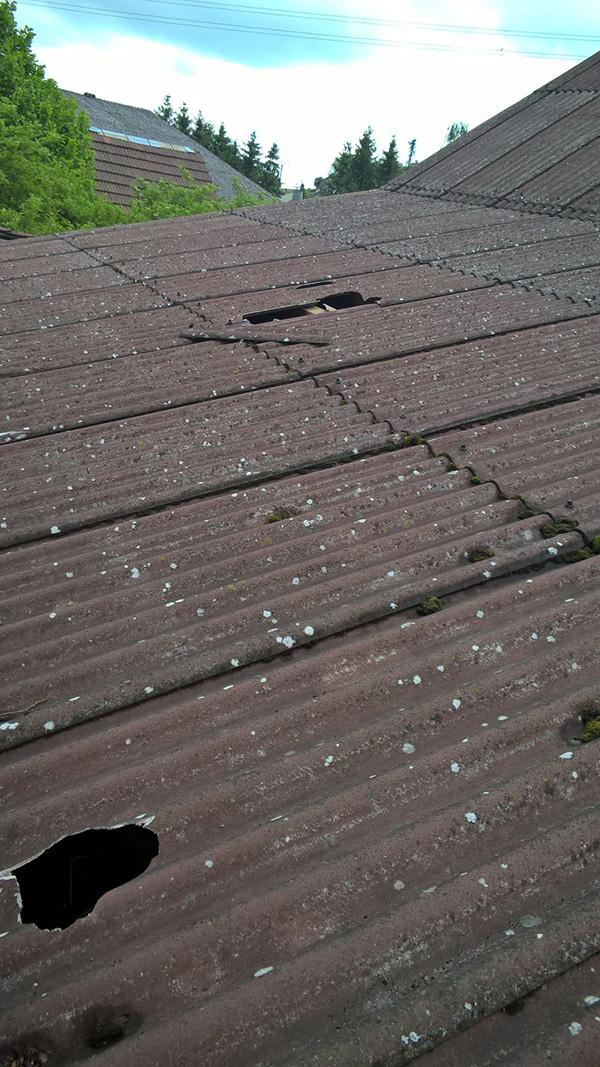 Rind auf dem Dach, Schaden 2
