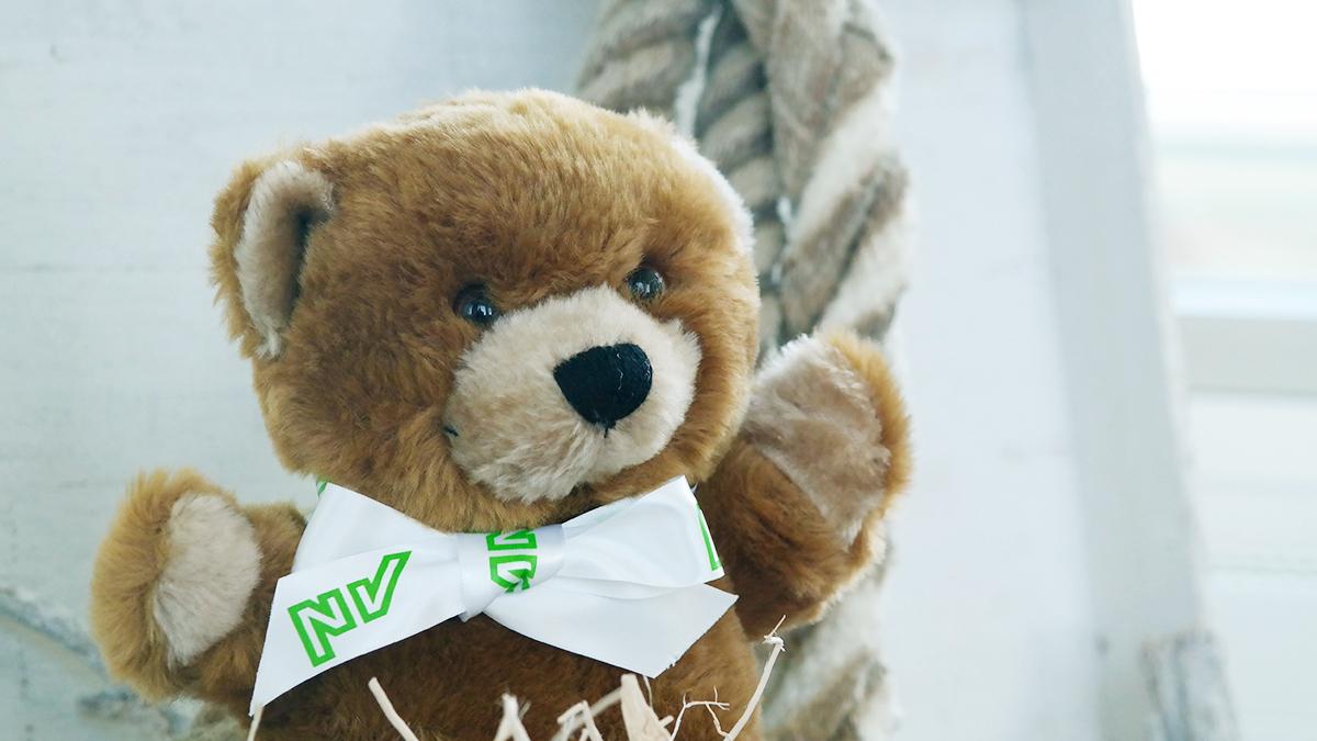 Teddy Unfall Kind NV